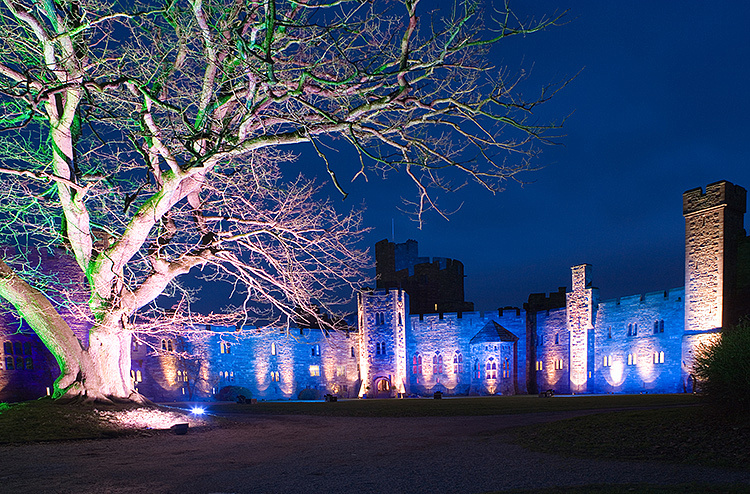 wedding photography at various locations around peckforton castle